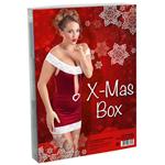 Erotisches Weihnachtspaket