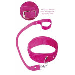 Pink Leash & Collar