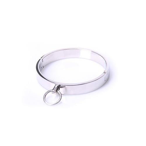 Stalen Halsband - Large