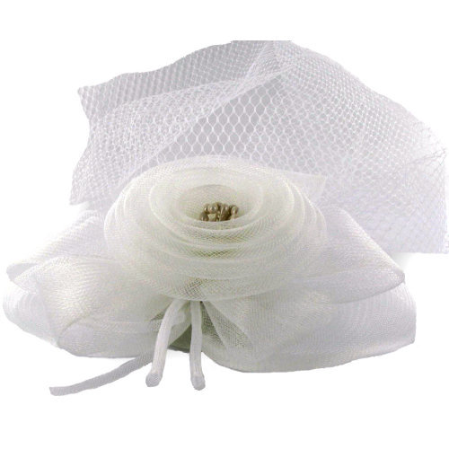 Witte Haar Accessoire met Sluier