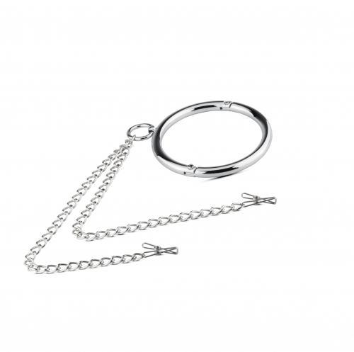 Metalen Halsband Met Tepelklemmen