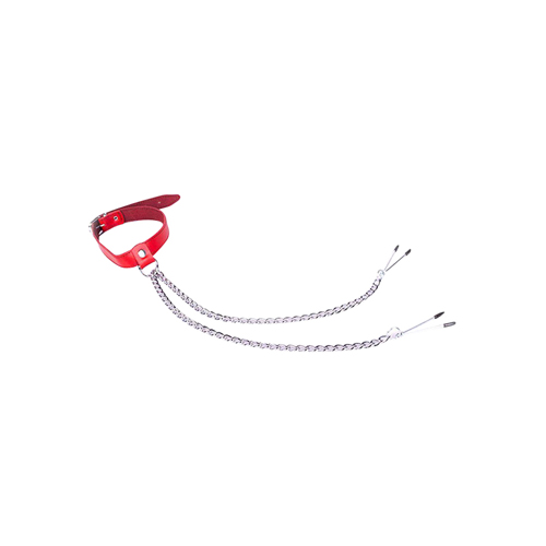 Rode halsband met tepelklemmen er ...