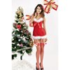 butterfly_christmas_costume