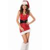 christmas_vixen_kostuum