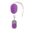 10_speed_remote_vibrating_egg_purple