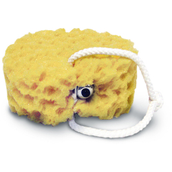 Vibrating Foam Sea Sponge