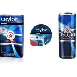 Ceylor Energy 6...