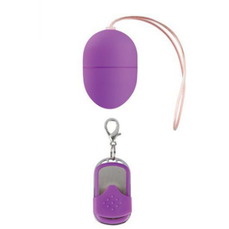 10 Speed Remote Vibrating Egg Purple