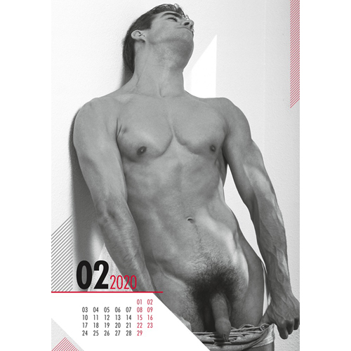 Pin-Up Kalender Real Cocks 2019