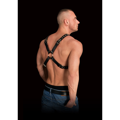 Adonis Chest Harness image .3