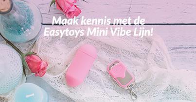 Easytoys Mini Vibrators